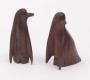 Pinguin madeira